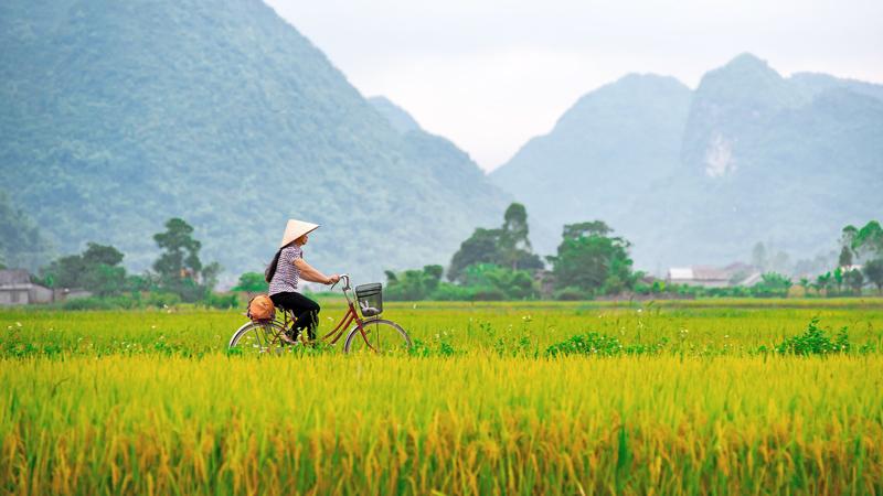 Vietnam & Kambodsja